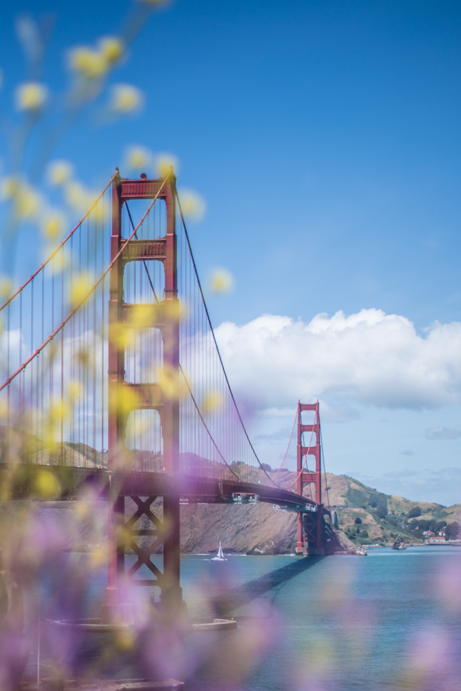 Golden-Gate-Floral